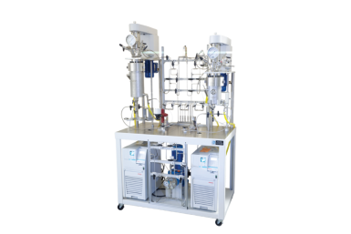 Custom Designed Stirred Reactor System